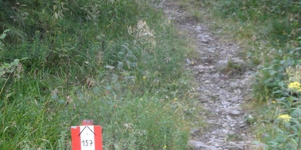 Markierung des Weges kurz nach Flattnitz