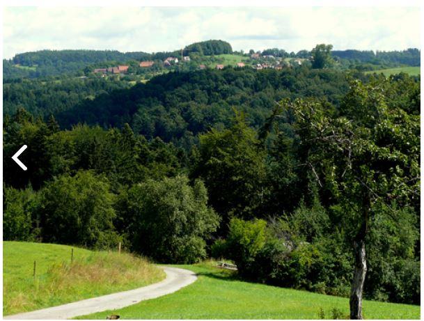 Der Radweg Idyllische Straße führt durch weite Wälder, grüne Wiesentäler und interessante Städte mit vielen historischen Sehenswürdigkeiten.  - @ Autor: Silke Rüdinger  - © Quelle: Hohenlohe + Schwäbisch Hall Tourismus e.V.