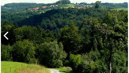 Der Radweg Idyllische Straße führt durch weite Wälder, grüne Wiesentäler und interessante Städte mit vielen historischen Sehenswürdigkeiten.