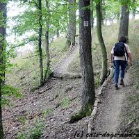 Auf dem Weg zum Burgberg