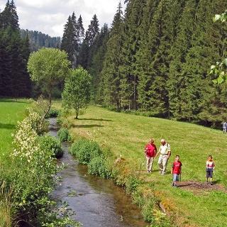 Wandern im Zinsbachtal bei Altensteig