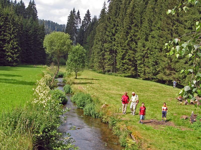 Durchs Mühlental zum Naturlehrpfad