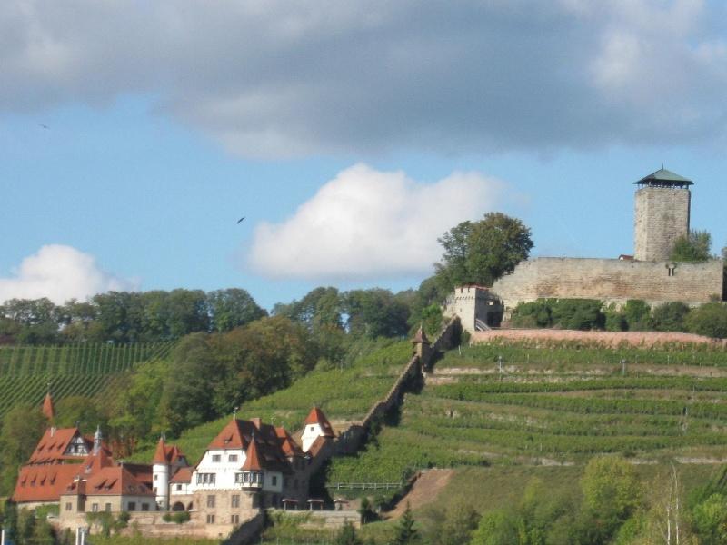 Foto Heilbronner Weinberge aus Heilbronn - Bilder meinestadt.de