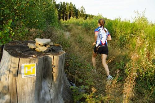 Sauerland-Höhenflug-Trailrun: 10 km
