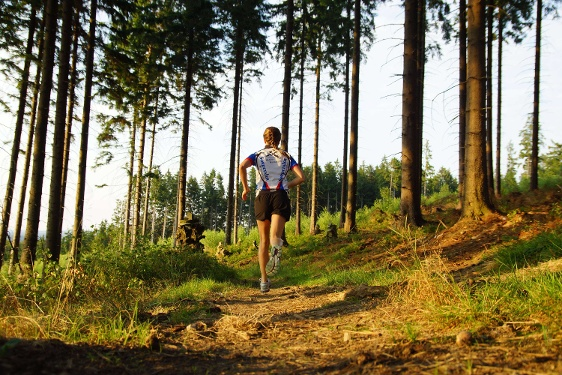 Trailrun Sauerland-Höhenflug