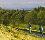Bad Krozingen - Wandern & Wellness