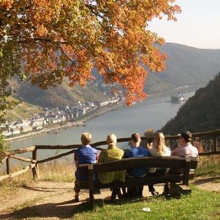 Blick auf Kaub und die Pfalzgrafenstein vom Pfalzblick
