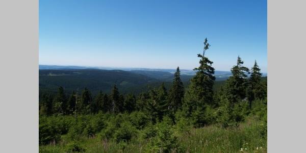 Blick vom Plattenberg