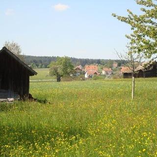 Zwerenberger Dorflehrpfad