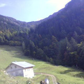 Blick zur Brunnauscharte und Hochgrat von der Brunnen-Alpe