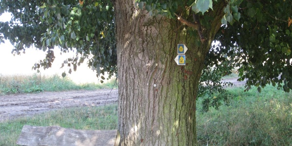 Wegmarkierung bei Kleinrettbach (Aug. 2013)