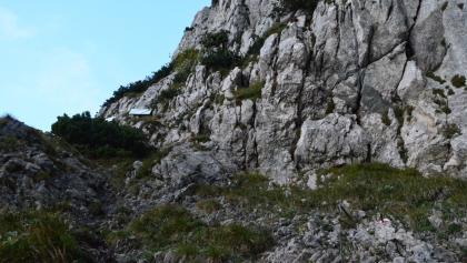 kurz vor der Abzweigung (etwa 1500m)