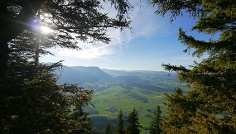 Blick beim Aufstieg zum Gipfel des Burgberger Hörnle