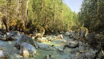Die Ramsauer Ache im Zauberwald.