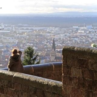 Ettlingen Aussicht vom Bismarckturm