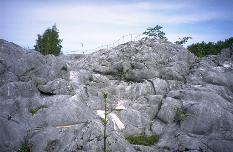 Wandern von Flintsbach aus -  Zum Gletschergarten/Gletscherschliff