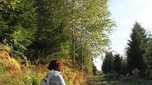 Wanderung ins Waldprechtstal