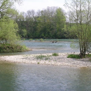 Aare Uferweg