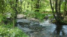 "Nordic-Walking-Tour Heuzert ""Grosse-Nister-Runde"" 13,6 km"