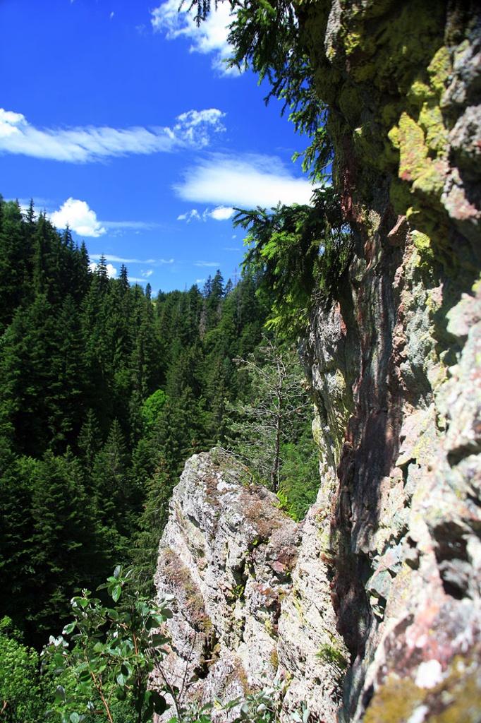 Schluchtensteig Etappe 3 von der Schattenmühle nach Fischbach-Schluchsee