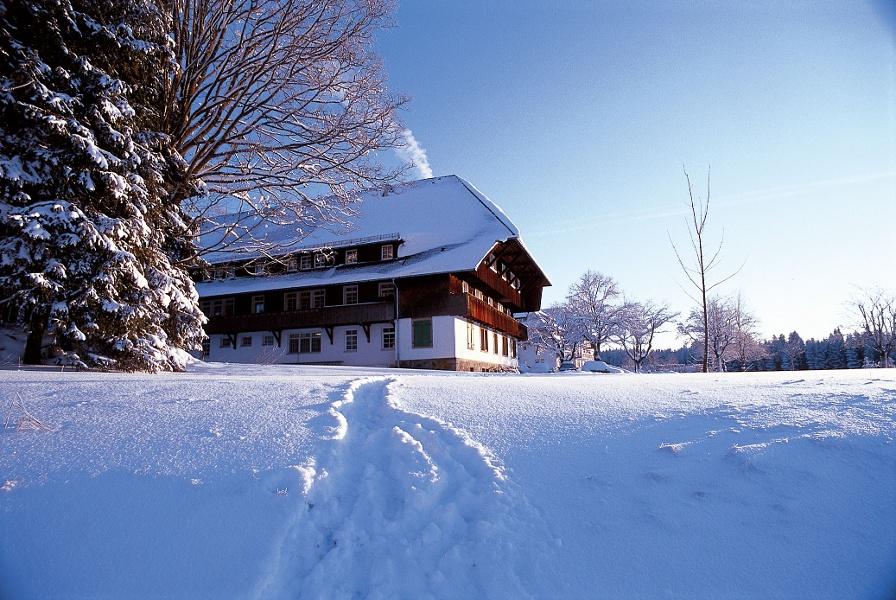 Gießbacher Kopf - Schneeschuhtrail
