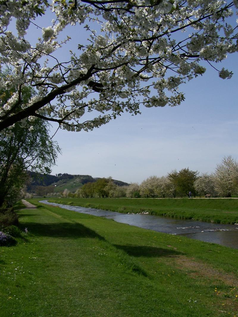 Oberkirch - Rundwanderung über das Sulzbacher Grat