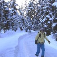 Schlittschuhlaufen durch eine märchenhafte Winterlandschaft