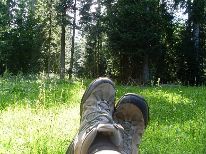 Größere Runde von Freudenstadt auf Fußpfaden zur Berghütte Lauterbad