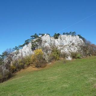 26.10.2013: Der Grünbacher Hausstein