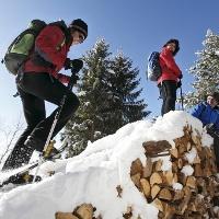 Schneeschuh-Spaß im Hochschwarzwald