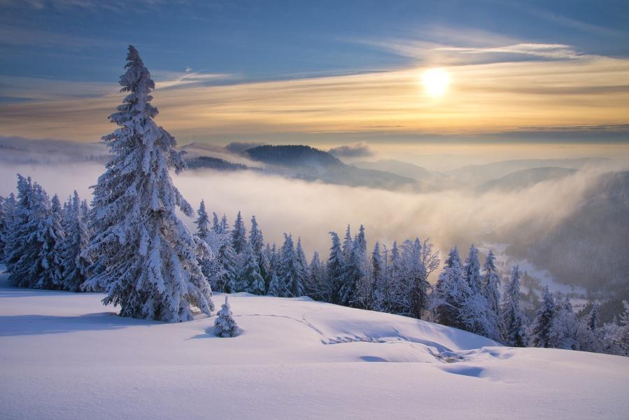 Seebucktrail - Schneeschuhtrail