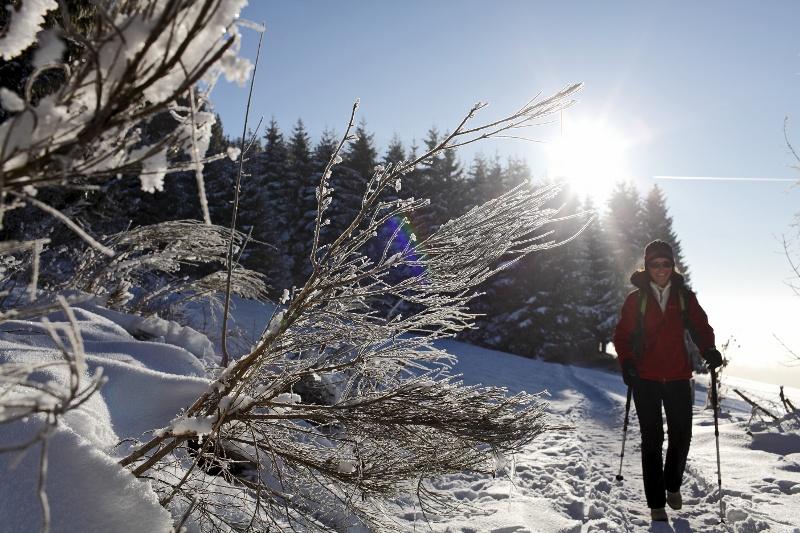 winterwanderung von h usern richtung blasiwald hochschwarzwald tourismus gmbh. Black Bedroom Furniture Sets. Home Design Ideas