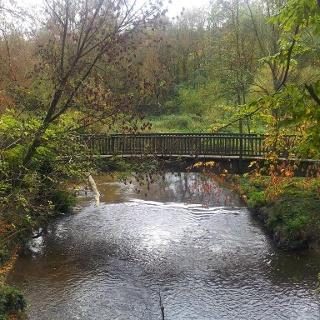 Brücke im Wurmtal
