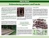 """""""Holznutzung gestern u. heute"""", im Tal der blinden Rot  - @ Autor: Heinz Obinger  - © Quelle: Hohenlohe + Schwäbisch Hall Tourismus e.V."""