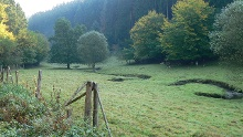 "Nordic-Walking-Tour Grenzbachtal – ""Ochsentour 4"""