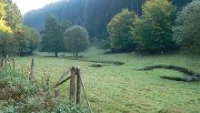 "Nordic-Walking-Tour Grenzbachtal – ""Bergbauweg"""