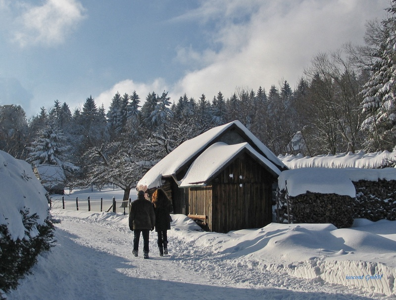 Winter-Wanderwege Dobel