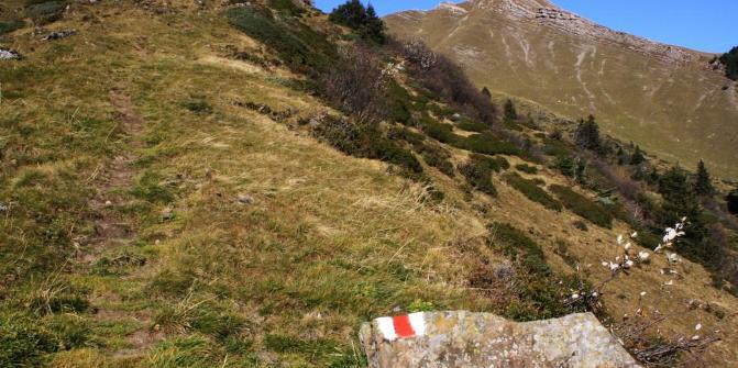 Durch schönes Voralpengelände quert der Bergweg die weitläufige ...