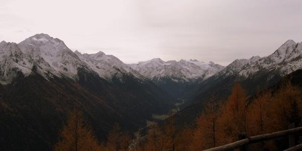 Bei der Kaserstattalm mit Blick in den Talschluß des Stubaitales, hinten der Stubaier Gletscher mit dem markanten Zuckerhütl, im Vordergrund links der mächtige Habicht