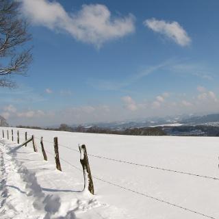 Panoramaweg bei Windhausen auf dem Sauerland-Höhenflug