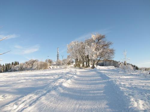 Von Wildewiese nach Faulebutter: Winterwanderung auf dem Sauerland-Höhenflug