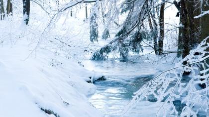 Eingefrorener Bach