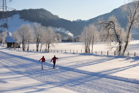 Cross-country skiing near Mandling