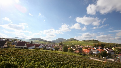 Ortsansicht Birkweiler