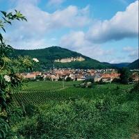 Frankweiler mit altem Steinbruch