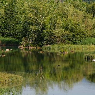 Paradies für über 120 Vogelarten