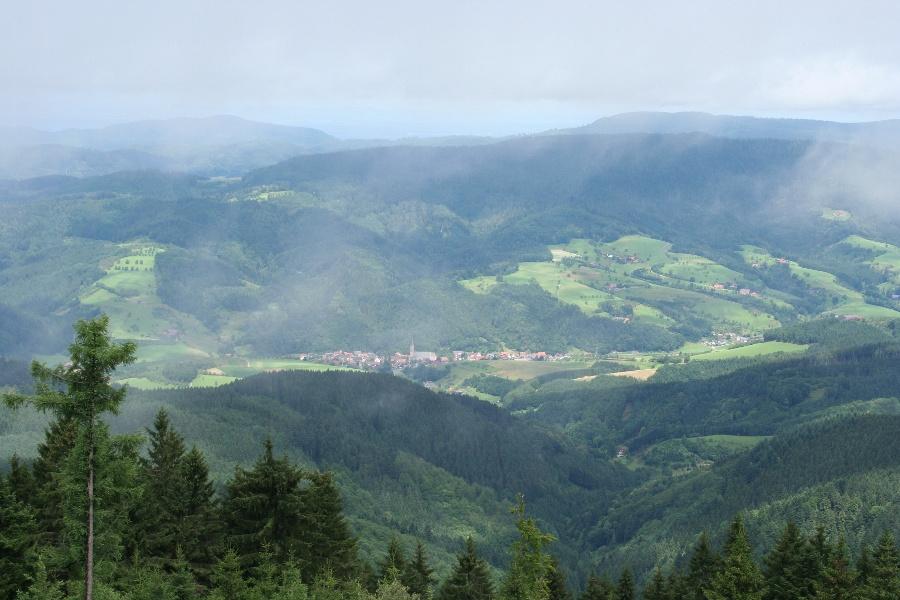 Oberharmersbach - Brandenkopftour (Nordic Walking auf fast 1.000 Meter Höhe)