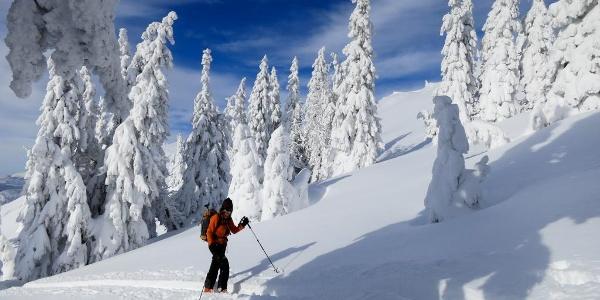 Aufstieg durch den hochwinterlichen Wald