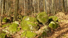 "Lindenfels: Geopark-Pfad ""Geologischer Rundgang"""