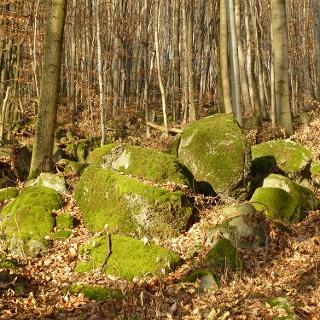Geologischer Rundgang Lindenfels